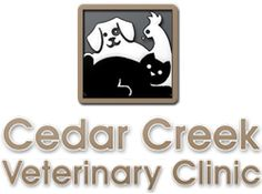 Our Website, check it out for great information on our clinic and ALL your family's pets