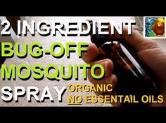 Make Your Own Organic Bug Spray With Two Simple Ingredients You Already Have. This Will Save You Money.