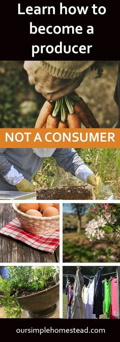 Learn How to Become a Producer not a Consumer - For us, it means keeping life as simple as possible. It means living as close to the land and being as self-sufficient as we possibly can. It means knowing what we do today is building the foundation for our Organic Gardening, Gardening Tips, Living Off The Land, Homestead Survival, Survival Skills, Survival Gear, Backyard Farming, Permaculture Garden, Urban Homesteading