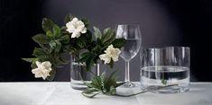 Gardenias in Glass Vase  -  Vadim Klevenskiy - oil on canvas