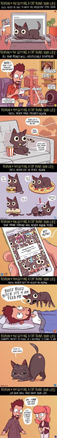 8 Ways Getting A Cat Ruins Your Life (By Adam Ellis) - 9GAG