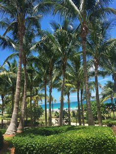 Sea View | St. Regis Bal Harbour Resort
