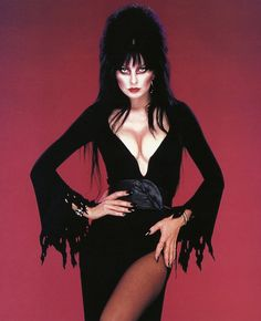 """...  of being malicious and evil like the original Vampira, Elvira was a spunky yet cynical """"valley girl"""" with a bright personality and a love for sexually charged puns. Description from popcultureaddict.com. I searched for this on bing.com/images"""