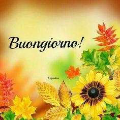 http://ift.tt/2vGE8yH Frasi di buongiorno sms di buongiorno messaggi di buongiorno buongiorno per te bongiorno per whatsa