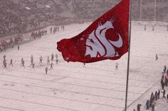The WSU Cougar Flag Waves in the snow during a game vs. Utah (November 2011).