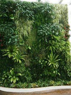 View the full picture gallery of Vertical Garden, Green Wall, Giardini Verticali Outdoor Wood Table, Outdoor Tables And Chairs, Planting Bulbs In Spring, Vertikal Garden, Vertical Garden Wall, Vertical Bar, Garden Solutions, Building A Pergola, Garden Journal