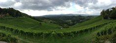 View from Tement winery in Austria (Steiermark)