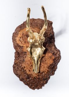 We created this modern rustic decorative wall-hook using a small slab of reclaimed Coolibah Burl Eucalyptus wood that we pair with a polished gold skull antler hook. Measures tall x wide x (away from wall)