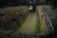Abandoned rail line circling Paris called the Petite Ceinture. It was built in 1852 to connect the Gares of Paris and it was I think the world's first commuter rail.
