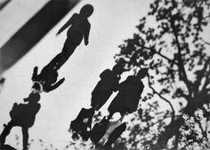 3wings:UntitledDr. Paul Wolff & Alfred Tritschler