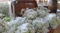 Peniculata in wedding. Love!