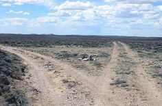 Wagon ruts in Wyoming still show where the California Trail and Oregon Trail parted ways