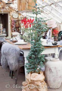 Piparkakku: Joulutunnelmaa