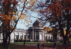 #Liegi #belgio #liegè #belgium #parco #park #verde #green #mamac #lomography #lomo #smena symbol #dem #photo #foto #analog #analogica #pellicola #film