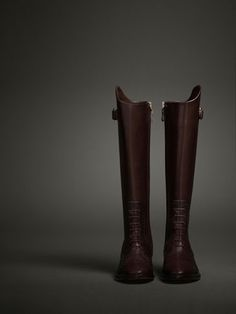 LIMITED EDITION LACE-UP BOOT - WOMEN - THE EQUESTRIAN - United States @massimodutti.com