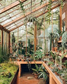 Potting shed greenhouse plans, small greenhouse kits, greenhouse supplies, gree Backyard Greenhouse, Greenhouse Plans, Greenhouse Wedding, Homemade Greenhouse, Greenhouse Attached To House, Cheap Greenhouse, Portable Greenhouse, Small Greenhouse Kits, Greenhouse Shelves
