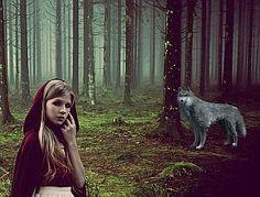 » Der Wald hier ist normalerweise recht ruhig, Menschen gibt es eigentlich selten. Holzfäller lassen...    #literatur