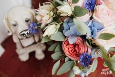 amy faith photography wedding photographer documentary natural fun quirky different creative liverpool manchester london scotland ireland europe international destination elopement bridesmaids groom bride http://www.amyfaithphotography.com