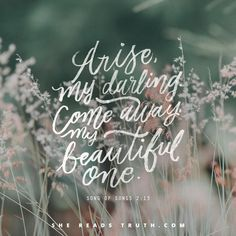 Day 2 of the Song of Songs Bible-reading plan from She Reads Truth. ~ Invitation to Enjoy a Spring Day ~ Today's Text: Song of Songs 2:8-17, Isaiah 62:5, Ephesians 5:31-33 [...]