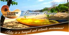 Cashew Grove Beach Resort Philippines Palawan, Beach Resorts, Environment