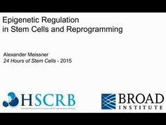Epigenetic regulation in stem cells and reprogramming - YouTube