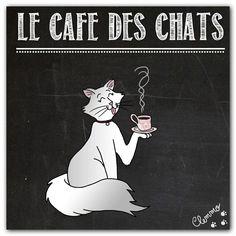 Le Café des Chats à Paris, un best de la ronron-thérapie !  @Clementine Berlioz