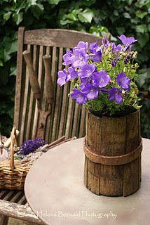 cute rustic planter