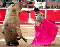 fotos impactantes - Taringa!