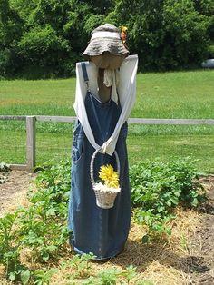 Humble scarecrow!