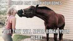 Horses Funny - Funny Horse Meme - - The post appeared first on Gag Dad.- Horses Funny - Funny Horse Meme - - The post appeared first on Gag Dad. Funny Horse Memes, Funny Horse Pictures, Funny Animal Jokes, Funny Horses, Cute Horses, Pretty Horses, Cute Funny Animals, Beautiful Horses, Horse Humor