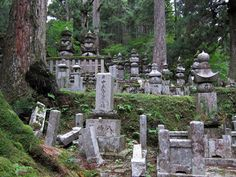 Sleeping with Monks: A Night in a Japanese Temple in Koya-San
