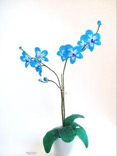 Orchidée bleue en perles de rocaille - Marie-Astrid M.