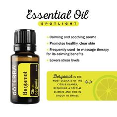 A highly favored oil for its lovely fragrance, Bergamot is unique citrus oils for its calming properties.