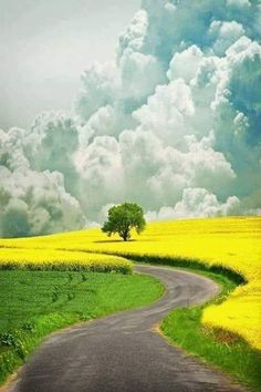 What colors and scenic beauty. Landscape Photos, Landscape Art, Landscape Paintings, Landscape Photography, Nature Photography, Scenery Pictures, Nature Pictures, Beautiful World, Beautiful Places