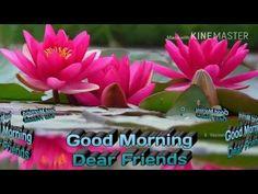 Good morning 2017 whattsapp videos 2789 - YouTube