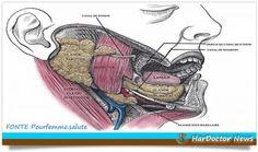 Tumori alle ghiandole salivari, sintomi e cure