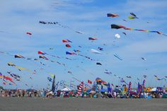 Washington State International Kite Festival - Long Beach, WA