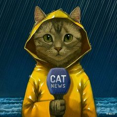 Tom Cat reporting live about. Indonesia ahahha - - Profil - Katzen World Cool Cats, I Love Cats, Image Chat, Photo Chat, Cat Drawing, Crazy Cats, Cat Art, Cats And Kittens, Funny Cats