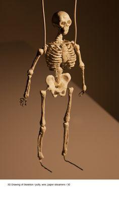 caia – Portfolio – 3D Drawing of Skeleton