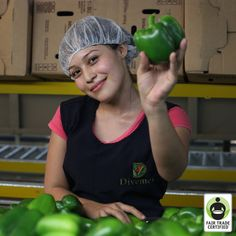 With #FairTrade, #women are empowered to be business leaders. Meet Carolina, a strong female bell pepper farm worker! #womensempowerment