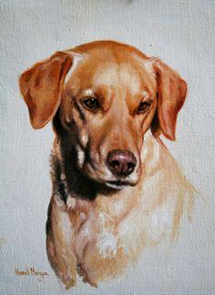 Hazel Morgan oil painting of a yellow labrador