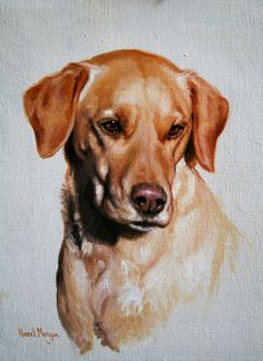 Hazel Morgan oil painting of a yellow labrador