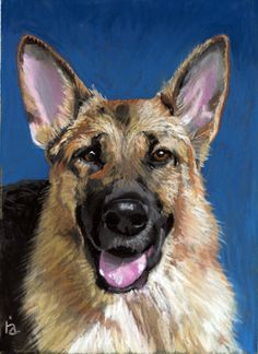 Finn NFS - pastel painting - Visit my website for a discount on pet portraits!