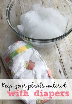 Tired of plants drying out and dying on you? Did you know you can keep your plants watered with diapers? Use this simple garden hack to keep your plants watered for a week or longer.