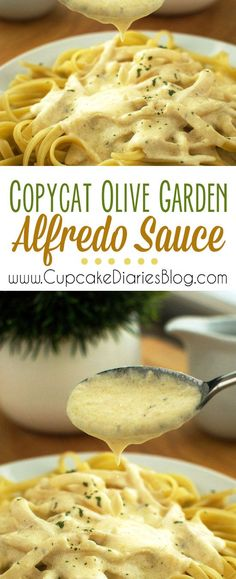 Copycat Olive Garden Alfredo Sauce: Olive Garden Chicken Alfredo Recipe, Alfredo Chicken, Olive Garden Pasta, Olive Garden Soups, Olive Garden Alfredo Sauce Recipe With Cream Cheese, Chicken Parmesan Olive Garden, Homemade Chicken Alfredo Sauce, Pasta With Olive Oil, Pasta With White Sauce