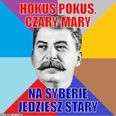 Very Funny Memes, Wtf Funny, Hilarious, Funny Mems, Dark Memes, History Memes, Take Better Photos, Dramione, Good Mood