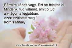 Kornis Mihály idézete képességeinkről. A kép forrása: Lélekmozaikok # Facebook