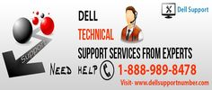 Dell Support Phone Number