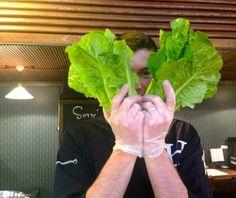 Salaatti nro 94 - kauppahallin salaatit. Lettuce, Celery, Vegetables, Food, Essen, Vegetable Recipes, Meals, Yemek, Salads