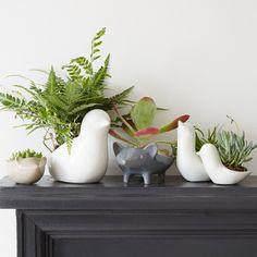 Ceramic Animal Planters via West Elm $16 - %39